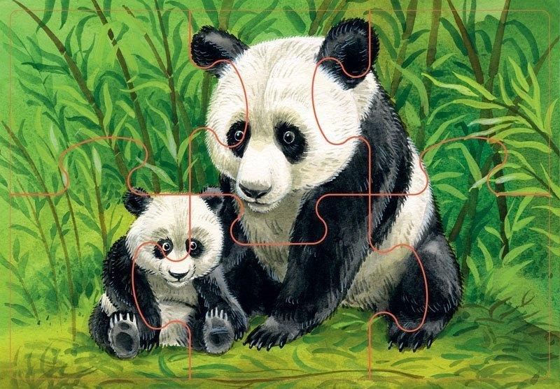 Картинки животные красивые для детей, открытки год