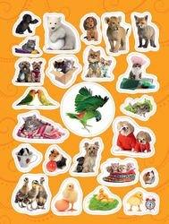 Книга с наклейками 100 наклеек Забавные животные (24470) фотография 2