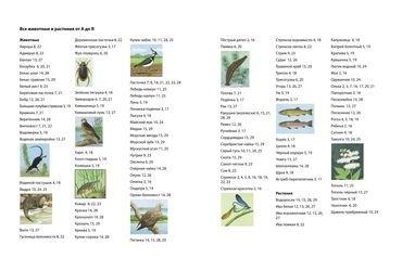 Книга находилка-определялка Речная прогулка с панорамными иллюстрациями 5+ фотография 2