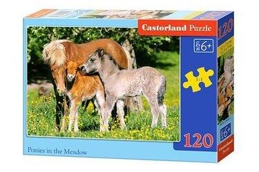 "Фото Пазл MIDI ""Лошади"", 120 элементов (В-12619,плотная коробка)"