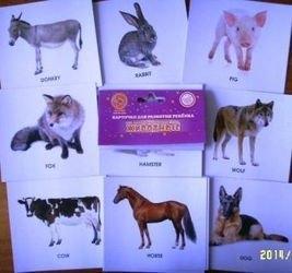 """Фото Карточки для развития ребенка Мои первые английские слова """"Животные"""""""