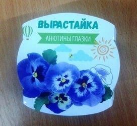 """Фото Набор для выращивания растений """"Вырастайка"""" Анютины глазки (4620)"""