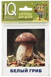 Фото Набор карточек для детейГрибное лукошко