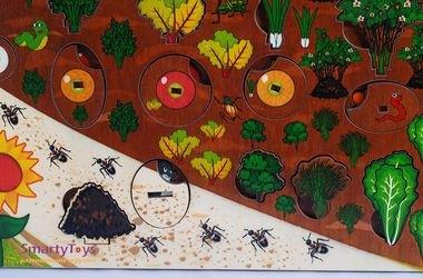 Развивающая деревянная игра Овощи на грядке (7907) фотография 5