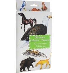 Фото Набор карточек Животные Северной Америки