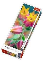 Фото Пазл Домашняя галерея Расцветающие цветы 300 элементов (75005)