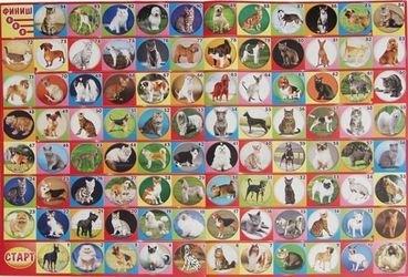 Настольная игра Фотовикторина Кошки и собаки (03436) фотография 2
