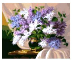 Фото Картина по номерам Цветы 40х50 см (GX7097)