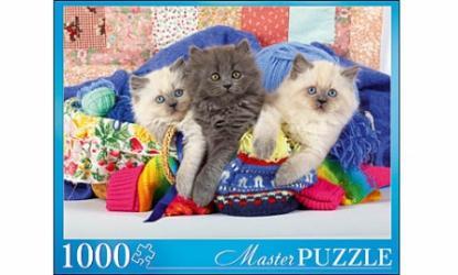 Фото Пазл Три персидских котёнка 1000 элементов Masterpuzzle (ГИМП1000-6880)