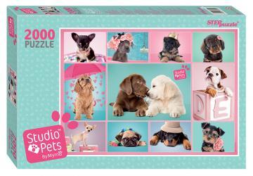 Фото Пазл Мирна, 2000 элементов, серия Studio Pets by Myrna (84300)