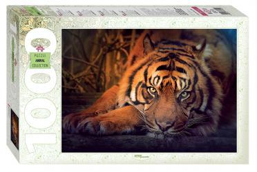 Фото Пазл Сибирский тигр, 1000 элементов (79142)