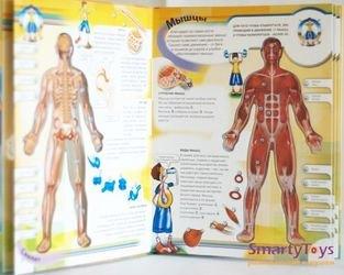 Книга Тело человека. Азбукварик фотография 3