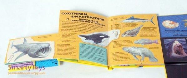 Детская книгаЗоология 3D. Погружение в бездну фотография 3