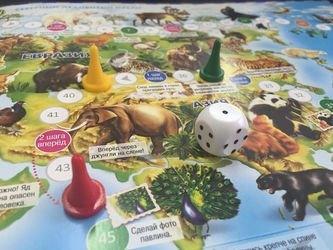 Настольная игра-ходилка Животный мир Земли фотография 3