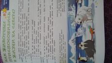 Фотография Детская Энциклопедия для малышей в сказках Ульева Е.А. предоставлена покупателем