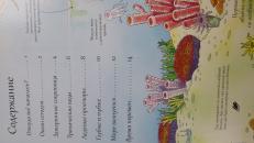 Фотография Книга с секретами Открой тайны подводного мира предоставлена покупателем